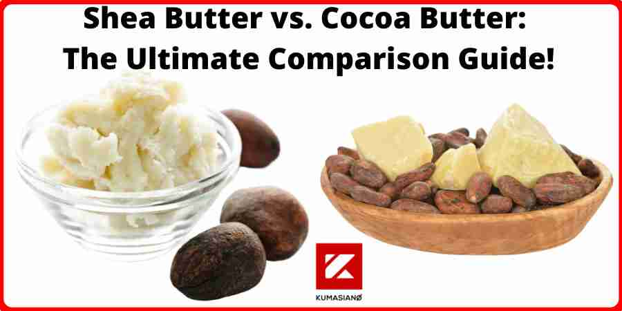 Shea Butter Vs Cocoa Butter Large